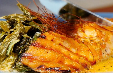 Grilled salmon in citrus sauce and fresh greens